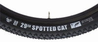 Vredestein Spotted Cat Competition 29''