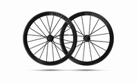 Lightweight Meilenstein 24E Clincher